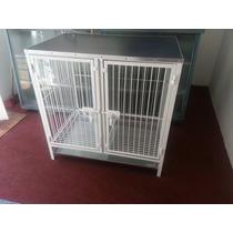 Mesa Con Jaula Doble Para Estética Canina Veterinaria