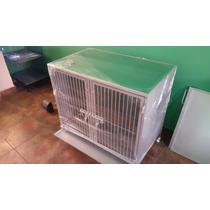 Paquete Estilista Canino Y Veterinario