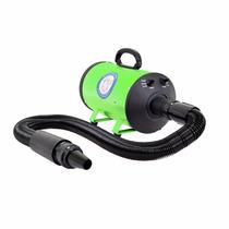 Secador De Pelo Con Calentador Y Ajuste Para Mascota Verde