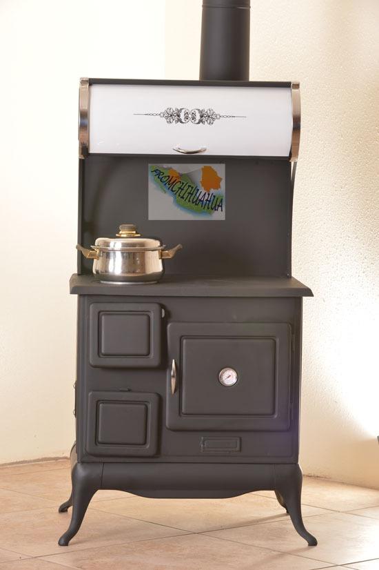 Pago de placas y tenencia vehicular en hermosillo sonora for Estufas de lena usadas