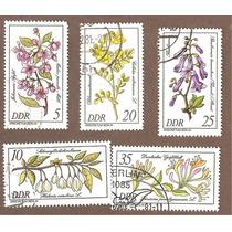 Flores De Alemania Del Este