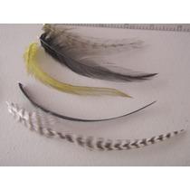 Extensiones De Plumas 100% Originales Fine Feathers Ahora!!!