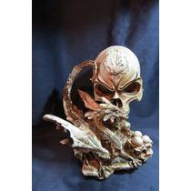 Cráneo Y Dragón