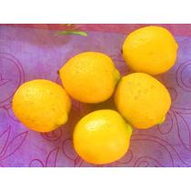 Lote De Limones Miniatura Para Adorno O Manualidad