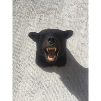 Animales Disecados 100 % Artificiales Oso Negro (black Bear)