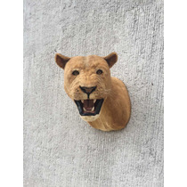 Animales Disecados 100 % Artificiales Leona ( Lioness )