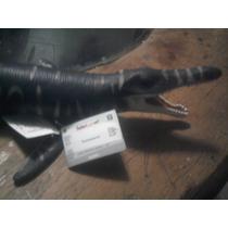 Dinoraiders Kronosaurio 1 Jurassick Park Dinosaurio Godzilla