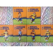 Libros De Tigres Colección Única 2011/2012