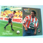Bimbo Cards, Guadalajara