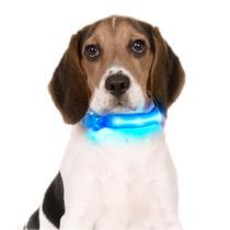 Collar Led Para Perros Y Gatos En Diferentes Colores!