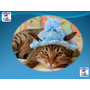 Gorro Tejido Para Gatos Talla 3 O 4