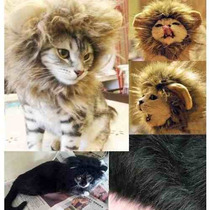 Ropa Para Gato Dragonpad Cat Costume Lion Mane Peluca Negro