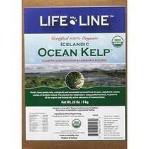 Suplemento Para Gato Life Line Orgánica Océano Perro Kelp S