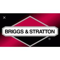 Vibrador Para Concreto Briggs&stratton