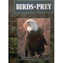 Perry, Phillip. Birds Of Prey. 1990. Libro En Inglés.