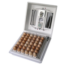 Incubadora Automática Para Pollo Codorniz Y Mas Omm