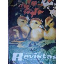 Revistas De Revistas No 18 Excelsior