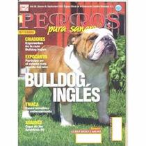 Revista De Perros Pura Sangre El Bulldog Inglés Sept 2009¿