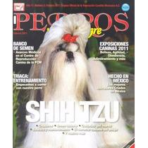 Revista Perros Raza Pura El Shih-tzu Febrero 2011 Vea Video