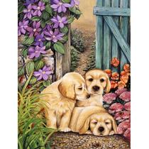 Los Cachorros De Labrador Amarillo Por Lesley Hallas La Band