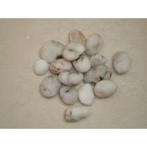 Piedras De Rio Blancas Decorativas Para Adornos $27 C. 1716