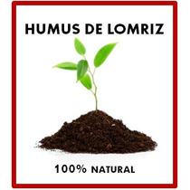 Humus De Lombriz / Abono Organico (entrega Personal Y Envio)