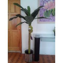 Plantas Artificiales Y Flores Varas Mdn