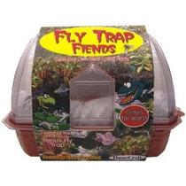 Dunecraft Windowsill Invernaderos - Venus Fly Trap