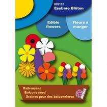 Flores Comestibles - Semillas Balcón Orgánica Pot Maíz Ma