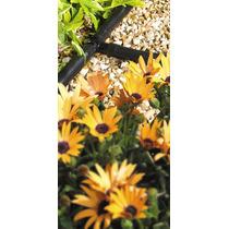Manguera - Hozelock T Pieza 13mm Jardín Accesorios De Jardi