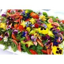 * Semillas Y Cosas-- 500 Semillas Comestibles Flor Mezcla De