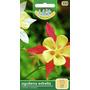 1 Sobre De Semilla Flor Aguilena Estrelle,colores Variados