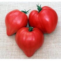 20 Semillas Jitomate Tomate Corazon De Buey Huerto Jardin