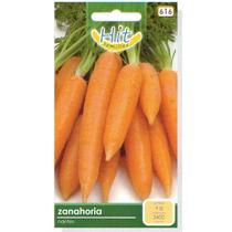 1 Sobre De Semilla De Zanahoria Nantes