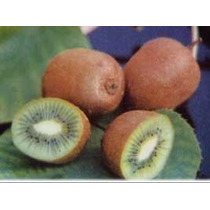 25 Semillas De Actinia Chinensis - Kiwi, Grosella China 990