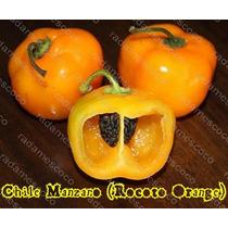 15 Semillas De Chile Manzano (rocoto Orange)