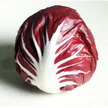 50 Semillas Organicas De Radicchio O Achicoria Roja Chicoria