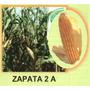 Maiz Amarillo Hibrido Zapata2 20kg Semilla Para Forrajes