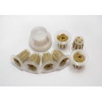 Planta Y Crecer Su Propio Kit De Semillas - Compatible Con T