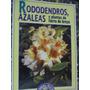 Rodondendros, Azaleas Y Plantas De Tierra De Brezo