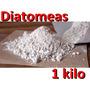 Tierra De Diatomeas Fertilizante Insecticida Organico Talco