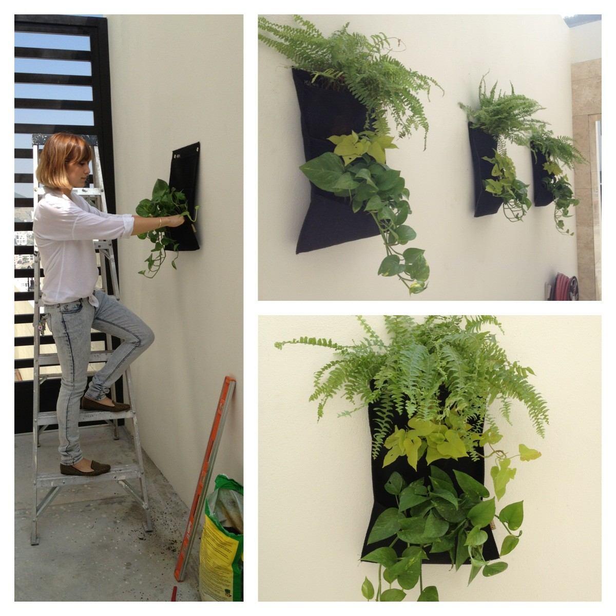 Jardines verticales decoraci n y plantas en - Plantas para jardines verticales ...