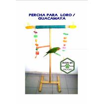 Percha Para Perico / Guacamaya