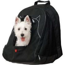 Bolsa Para Gato Petego Mascotas En El Trabajo Pet Carrier N