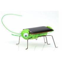 Insecto Solar De Juguete Solar Grillo (2 X $100)