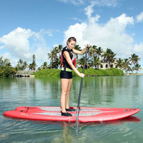 Paddle Board Kayak Lifetime, Remo Gratis ¡!¡!¡!
