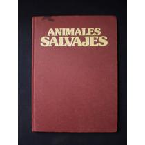 La Naturaleza. Animales Salvajes.