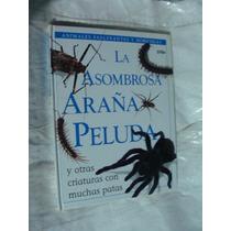 Libro La Asombrosa Araña Peluda , Animales Fascinantes Y Ho
