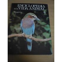 Enciclopedia De La Vida Animal 4 - Brugera
