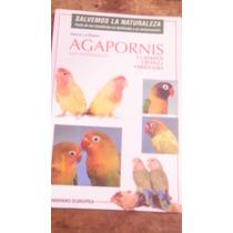Agapornis ( Los Inseparables ) Cuidados , Crianza , Variedad